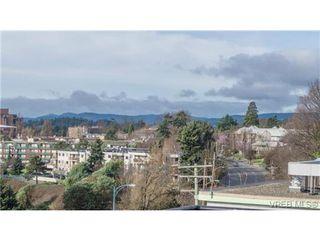 Photo 9: 306 356 E Gorge Rd in VICTORIA: Vi Burnside Condo Apartment for sale (Victoria)  : MLS®# 693005