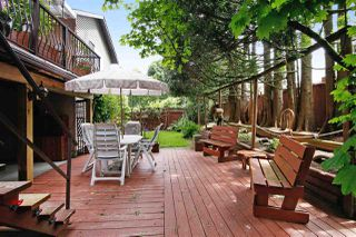Photo 16: 3702 HARWOOD Crescent in Abbotsford: Central Abbotsford House for sale : MLS®# R2174121