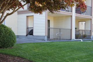"""Photo 14: 109 2821 TIMS Street in Abbotsford: Abbotsford West Condo for sale in """"Parkview Estates"""" : MLS®# R2212181"""