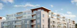 Main Photo: 313 10603 140 STREET in Surrey: Whalley Condo for sale (North Surrey)  : MLS®# R2194717