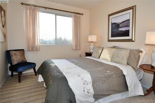 Photo 16: 304 2354 Brethour Avenue in SIDNEY: Si Sidney North-East Condo Apartment for sale (Sidney)  : MLS®# 386172