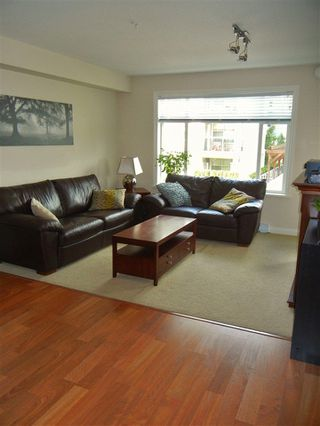 Photo 4: 211 19939 55A AVENUE in Langley: Langley City Condo for sale : MLS®# R2220320
