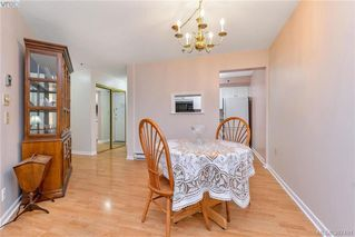 Photo 5: 209 3969 Shelbourne Street in VICTORIA: SE Lambrick Park Condo Apartment for sale (Saanich East)  : MLS®# 387491