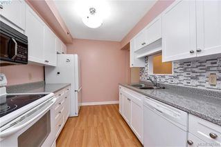Photo 4: 209 3969 Shelbourne Street in VICTORIA: SE Lambrick Park Condo Apartment for sale (Saanich East)  : MLS®# 387491