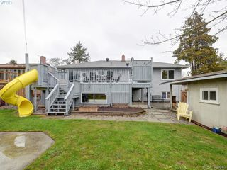 Photo 18: 141 Kamloops Ave in VICTORIA: SW Tillicum House for sale (Saanich West)  : MLS®# 783074
