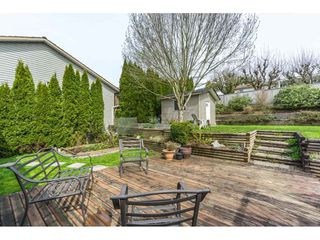 Photo 19: 3056 GLENDALE Place in Abbotsford: Abbotsford East House for sale : MLS®# R2259011