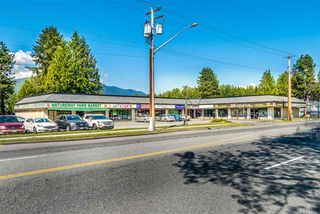 Photo 17: R2267192 - 3672 SEFTON ST, PORT COQUITLAM HOUSE