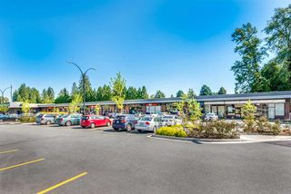 Photo 14: R2267192 - 3672 SEFTON ST, PORT COQUITLAM HOUSE