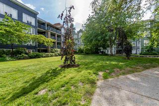 """Photo 2: 314 1189 WESTWOOD Street in Coquitlam: North Coquitlam Condo for sale in """"LAKESIDE TERRACE"""" : MLS®# R2274836"""