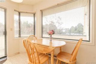 Photo 11: 211 3900 Shelbourne St in VICTORIA: SE Cedar Hill Condo Apartment for sale (Saanich East)  : MLS®# 795183