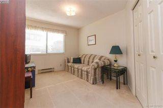 Photo 15: 211 3900 Shelbourne St in VICTORIA: SE Cedar Hill Condo Apartment for sale (Saanich East)  : MLS®# 795183