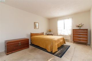 Photo 12: 211 3900 Shelbourne St in VICTORIA: SE Cedar Hill Condo Apartment for sale (Saanich East)  : MLS®# 795183