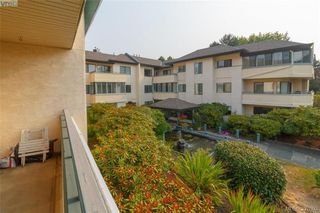 Photo 19: 211 3900 Shelbourne St in VICTORIA: SE Cedar Hill Condo Apartment for sale (Saanich East)  : MLS®# 795183