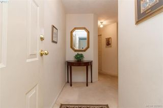 Photo 3: 211 3900 Shelbourne St in VICTORIA: SE Cedar Hill Condo Apartment for sale (Saanich East)  : MLS®# 795183
