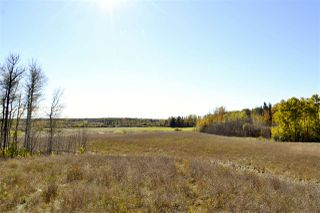Photo 15: Rge Road 24 & Hwy 16: Rural Parkland County Rural Land/Vacant Lot for sale : MLS®# E4131379