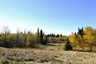 Photo 4: Rge Road 24 & Hwy 16: Rural Parkland County Rural Land/Vacant Lot for sale : MLS®# E4131379