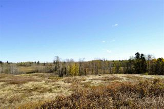 Photo 2: Rge Road 24 & Hwy 16: Rural Parkland County Rural Land/Vacant Lot for sale : MLS®# E4131379