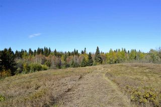 Photo 5: Rge Road 24 & Hwy 16: Rural Parkland County Rural Land/Vacant Lot for sale : MLS®# E4131379