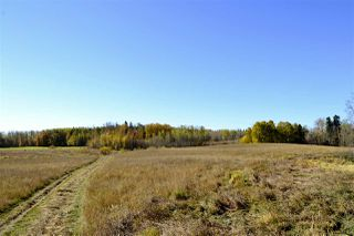 Photo 12: Rge Road 24 & Hwy 16: Rural Parkland County Rural Land/Vacant Lot for sale : MLS®# E4131379