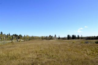 Photo 13: Rge Road 24 & Hwy 16: Rural Parkland County Rural Land/Vacant Lot for sale : MLS®# E4131379
