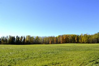 Photo 10: Rge Road 24 & Hwy 16: Rural Parkland County Rural Land/Vacant Lot for sale : MLS®# E4131379