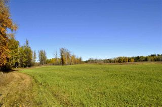 Photo 9: Rge Road 24 & Hwy 16: Rural Parkland County Rural Land/Vacant Lot for sale : MLS®# E4131379