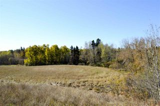 Photo 14: Rge Road 24 & Hwy 16: Rural Parkland County Rural Land/Vacant Lot for sale : MLS®# E4131379