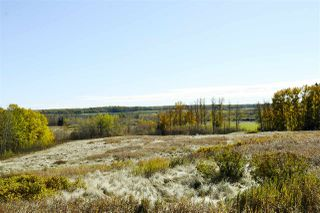 Photo 6: Rge Road 24 & Hwy 16: Rural Parkland County Rural Land/Vacant Lot for sale : MLS®# E4131379