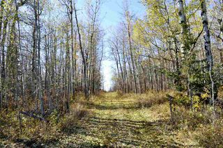 Photo 8: Rge Road 24 & Hwy 16: Rural Parkland County Rural Land/Vacant Lot for sale : MLS®# E4131379