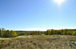 Photo 3: Rge Road 24 & Hwy 16: Rural Parkland County Rural Land/Vacant Lot for sale : MLS®# E4131379