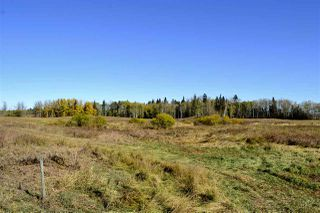 Photo 11: Rge Road 24 & Hwy 16: Rural Parkland County Rural Land/Vacant Lot for sale : MLS®# E4131379