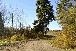 Photo 16: Rge Road 24 & Hwy 16: Rural Parkland County Rural Land/Vacant Lot for sale : MLS®# E4131379