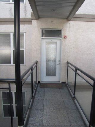 Photo 3: 345 4827 104a Street in Edmonton: Zone 15 Condo for sale : MLS®# E4143726