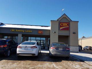 Photo 29: 116 FALCONER Court in Edmonton: Zone 14 Townhouse for sale : MLS®# E4146103