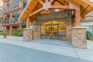 "Photo 2: 302 12565 190A Street in Pitt Meadows: Mid Meadows Condo for sale in ""CEDAR DOWNS"" : MLS®# R2352761"