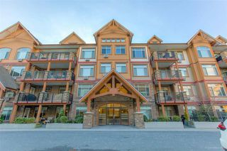 "Main Photo: 302 12565 190A Street in Pitt Meadows: Mid Meadows Condo for sale in ""CEDAR DOWNS"" : MLS®# R2352761"