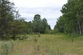 Photo 4: RR 205 TWP 574: Rural Sturgeon County Rural Land/Vacant Lot for sale : MLS®# E4150964