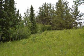 Photo 2: RR 205 TWP 574: Rural Sturgeon County Rural Land/Vacant Lot for sale : MLS®# E4150964