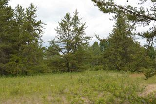 Photo 6: RR 205 TWP 574: Rural Sturgeon County Rural Land/Vacant Lot for sale : MLS®# E4150964
