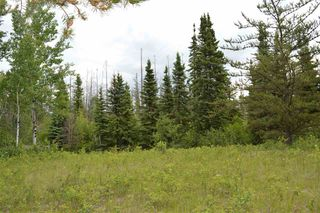 Photo 7: RR 205 TWP 574: Rural Sturgeon County Rural Land/Vacant Lot for sale : MLS®# E4150964