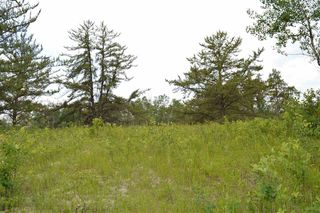 Photo 8: RR 205 TWP 574: Rural Sturgeon County Rural Land/Vacant Lot for sale : MLS®# E4150964