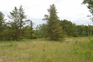 Photo 9: RR 205 TWP 574: Rural Sturgeon County Rural Land/Vacant Lot for sale : MLS®# E4150964