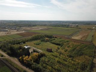Photo 3: 53130 RGE RD 271: Spruce Grove Land Commercial for sale : MLS®# E4152356
