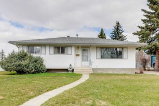 Main Photo: 6 FLAMINGO Drive: Sherwood Park House for sale : MLS®# E4156160
