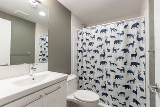 Photo 25: 9803 84 Street in Edmonton: Zone 19 House for sale : MLS®# E4160149
