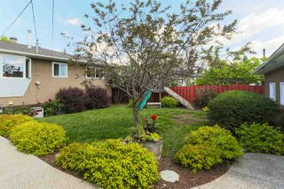 Photo 26: 16613 90 Avenue in Edmonton: Zone 22 House for sale : MLS®# E4161590