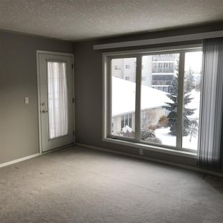 Photo 5: 304 237 Youville Drive in Edmonton: Zone 29 Condo for sale : MLS®# E4162338