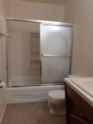 Photo 12: 11316 40 Avenue in Edmonton: Zone 16 House Half Duplex for sale : MLS®# E4164682