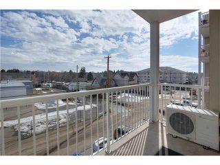 Photo 15: 313 5211 50 Street: Stony Plain Condo for sale : MLS®# E4172448