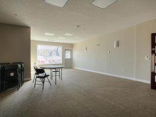 Photo 17: 313 5211 50 Street: Stony Plain Condo for sale : MLS®# E4172448